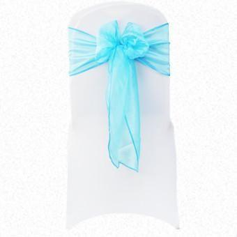Turquoise/Aqua Glassy RE Organza Sash