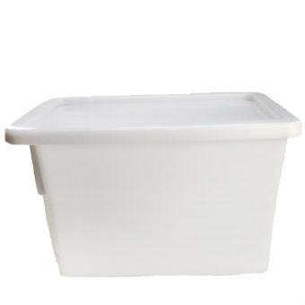 Ice Tub (60L)